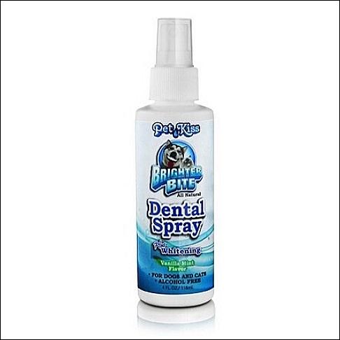 Zahnstein-Entfernung »Dental-Spray«