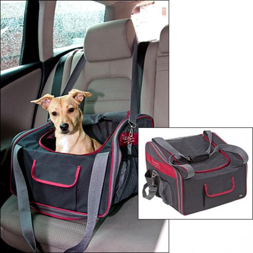 Sicherheits-Autositz & Tragetasche in einem