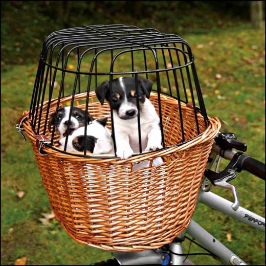 Yorkie-Fahrradkorb »Tour I«