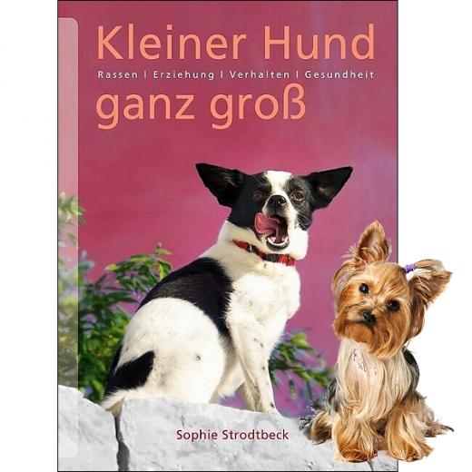 Kleiner Hund ganz groß - Erziehung & Gesundheit