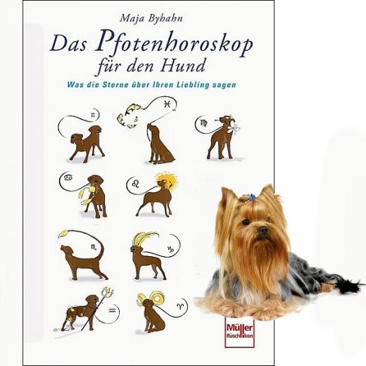 Das Horoskop für den Hund