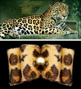 Yorkie-Edel-Haarspange »Wildlife«