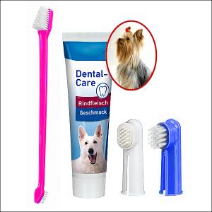 Zahnpflege-Set + Zahncreme »Fleischgeschmack«