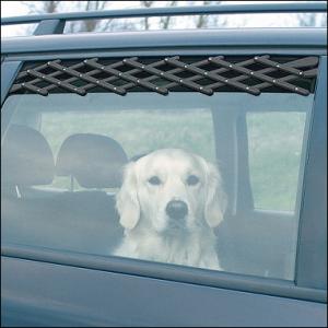 Autofenster-Luft & Schutzgitter