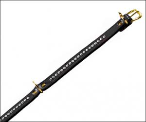 ANGEBOT:  Yorkie-Halsband »Starlight« - SCHWARZ